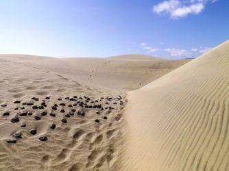 Kúsok Sahary na Kanárskych ostrovoch – Dunas de Maspalomas